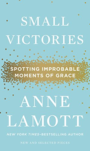 Small Victories: Spotting Improbable Moments of Grace (Small Victories Spotting Improbable Moments Of Grace)