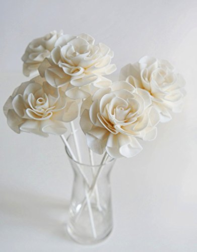 Plawanature Set of 5 Camellias Sola Flower with Reed Diffuser for Home Fragrance. (Camellia Vase)