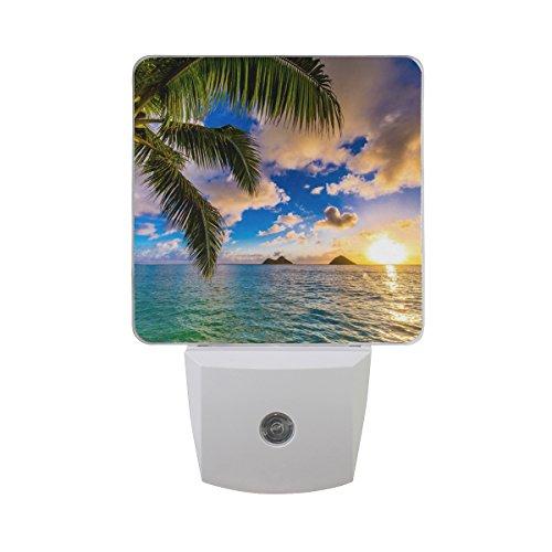 JOYPRINT Led Night Light Tropical Hawaii Palm Tree Ocean Sea Sunset, Auto Senor Dusk to Dawn Night Light Plug in for Kids Baby Girls Boys Adults Room (Palm Tree Night Light)
