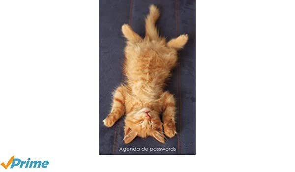 Agenda de passwords: Agenda para endereços electrónicos e passwords - Capa gatinho ruivo a relaxar (Agendas com gatos) (Portuguese Edition): Coisas ...