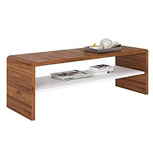 IDIMEX Table Basse Noelle, Table de Salon rectangulaire ou Meuble TV de 120 cm avec 1 étagère Espace de Rangement Ouvert…