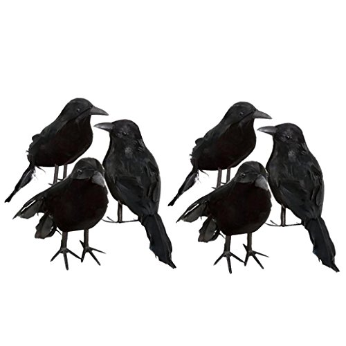 6pcs Real Touch Black Feathered Small Crows Birds Ravens for Halloween -