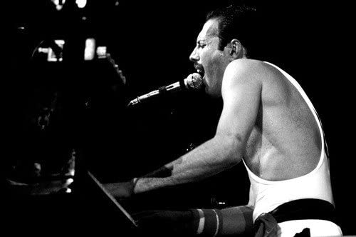 queen freddie mercury live aid wembley stadium in concert at piano 24x36 poster at amazon s entertainment collectibles store queen freddie mercury live aid wembley stadium in concert at piano 24x36 poster