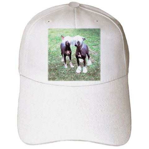 Hairless Chinese Crested - 3dRose Dogs Chinese Crested Hairless - Chinese Crested Hairless - Caps - Adult Baseball Cap (cap_415_1)