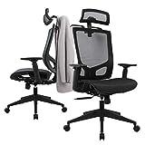 Statesville High Back Ergonomic Mesh Office Chair - Adjustable Backrest, Seat Slider, Coat Hanger and Headrest Computer Chair Desk Chair, Black