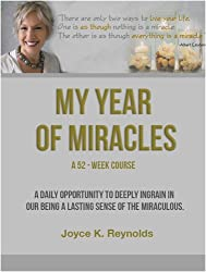 My Year of Miracles