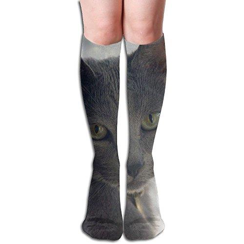 ZQWSock Womens Russian Blue Shorthair Kittens Below Knee Socks Soft Boot Socks Tube Stockings One - Russian Women Tube
