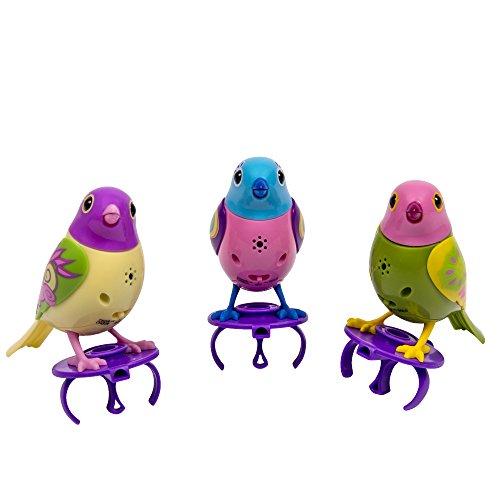 Glass Songbird Birdbath - DigiBirds - 3 Count Set of DigiBirds - Purple Set