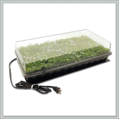 Joebonsai Heated Seed Germination Station: Garden & Outdoor
