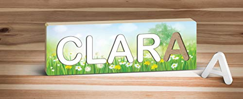 Picture Wall Art Custom Baby's, Child's, or Kid's 9 to 10 Letter 3D Name Puzzles - Field of Daisys