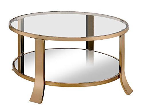 HOMES: Inside + Out IDF-4371C Skyler Coffee Table, Champagne