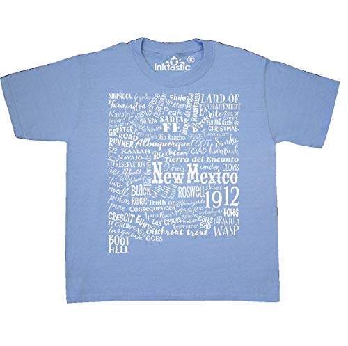 inktastic - New Mexico State Youth T-Shirt Youth X-Small (2-4) Light Blue 331a2 - Farmington 4 Light
