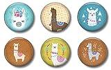 Llama Magnets: Cute Locker Magnets for Boys and Girls (Llama)