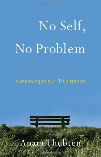 No Self, No Problem: Awakening to Our True Nature