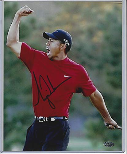 (Tiger Woods Autographed 8x10 Photograph )
