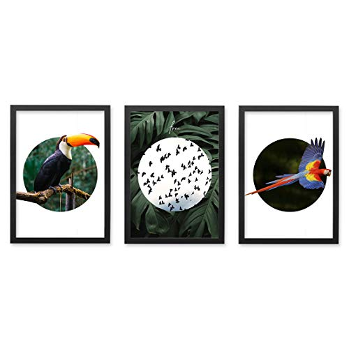 Conjunto Quadros Decorativos Pássaros Moldura Preta 102x43cm - Prolab Gift