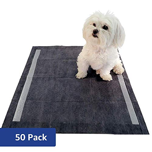 Amazon Brand Solimo Odor Control Activated Carbon Super Absorbent Heavy Duty Leak Proof Pet Puppy Dog Training Pee Pads, Regular, 50 ct