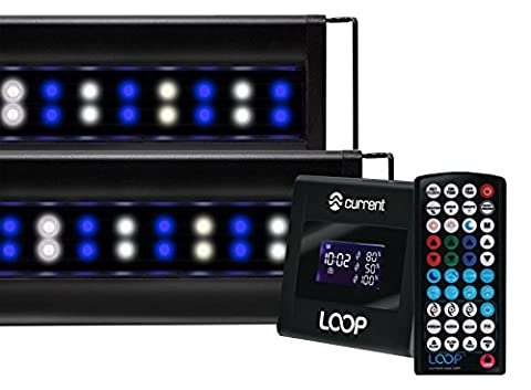 Current USA 4228 Orbit Marine IC PRO LED Reef Aquarium Dual Light System with Wireless Loop, 72