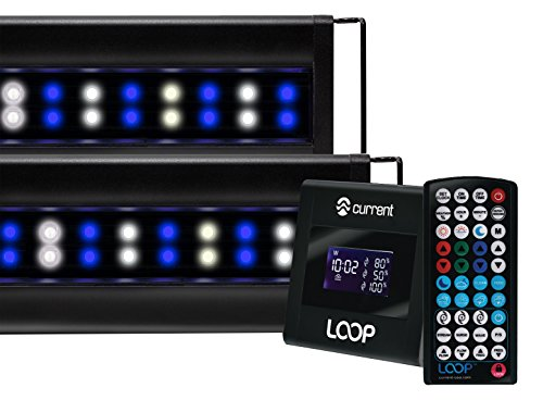 (Current USA 4227 Orbit Marine IC PRO LED Reef Aquarium Dual Light System with Wireless Loop, 48