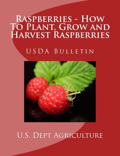 Raspberries - How To Plant, Grow and Harvest Raspberries: USDA Bulletin (Grow Plant Raspberry)