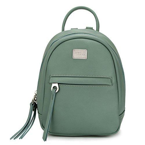 DAVID - JONES INTERNATIONAL Mini Fashion Backpack Purse Small Leather Green Bookbag for Teen Girls by DAVID - JONES INTERNATIONAL.