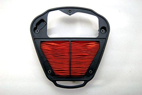 (Kawasaki OEM Replacement Air Filter Vulcan 2000 04-10 11013-0028)
