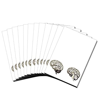 Brain (Brain Note Pad 12) : Office Products