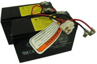 (Razor 24 Volt 7 Ah Battery for E200 (V13+) and E300 (V11 & V13+) - W13112430185)