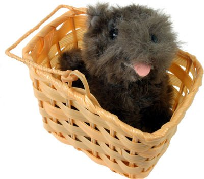 Wizard Of Oz Toto In Basket ()