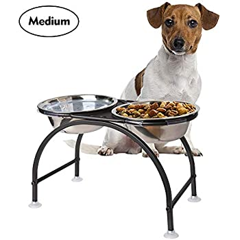 Amazon.com: AISHN - Cuencos elevados para perros, soporte de ...