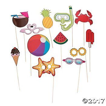 Summer Fun Photo Stick Costume Props - 12 pc