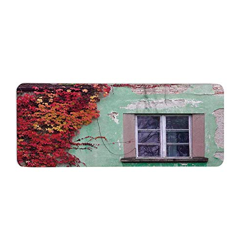 TecBillion Autumn Fashionable Long Door Mat,Fall Ivy on Old House Walls Left Countryside Mansion Vintage Architecture Design for Home Office,23.6