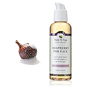 WINTER ONLY—Organic Face Wash & Body Wash Combo w/ Real Soapberries—Best Value Bath Set in Beautiful, Recyclable Gift Box, Naturally Nourish Dry, Sensitive Skin, Limited Supply, Lavender—Tree To Tub