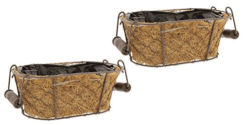 Lucky Winner Set of 2 Metal Wire Basket Planters with Coconut Fiber Liners 8