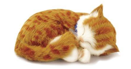 Body Cat - Perfect Petzzz Orange Tabby - Soft Body