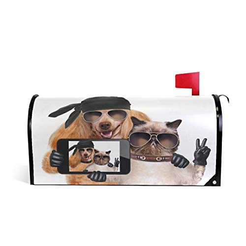 WIHVE Mailbox Cover Magnetic Pirate Dog and Cat Taking Selfie Together Standard Post Box Wraps 21