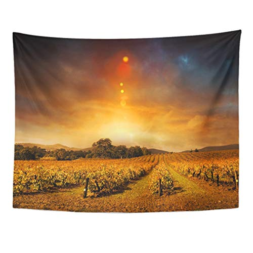 Tarolo Decor Wall Tapestry Vineyard Beautiful Sunset Over Barossa Valley in Autumn Wine Landscape 60 x 50 Inches Wall Hanging Picnic for Bedroom Living Room Dorm