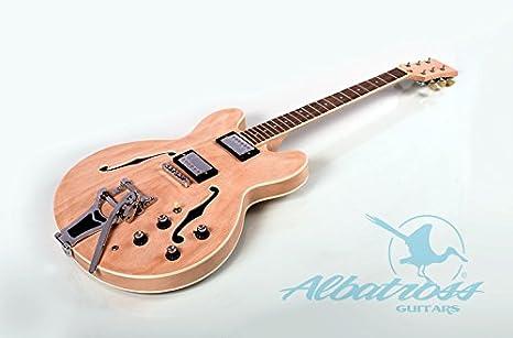 Albatross guitarras gk100 Semi hueca cuerpo guitarra eléctrica: Amazon.es: Instrumentos musicales