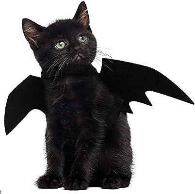 JDYW Disfraz de Gato Mascota Alas de murciélago para Perros ...