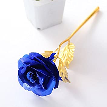 Amazoncom Febou 24K Gold Foil Rose Gift for Birthday Mothers