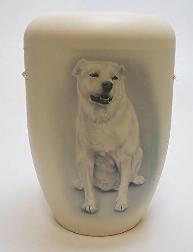 Biodegradable cremación cenizas urna – adultos tamaño – Pet diseño ...