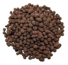 leca-clay-orchid-hydroponic-grow-media-2-lbs