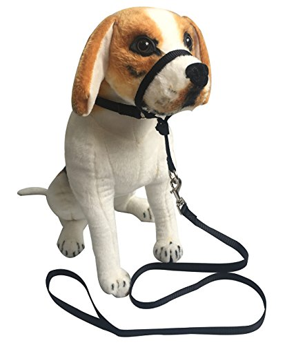 Headcollar Halter Painless Gentle Control Training Collars with Leash (M, Black) by Charmsong