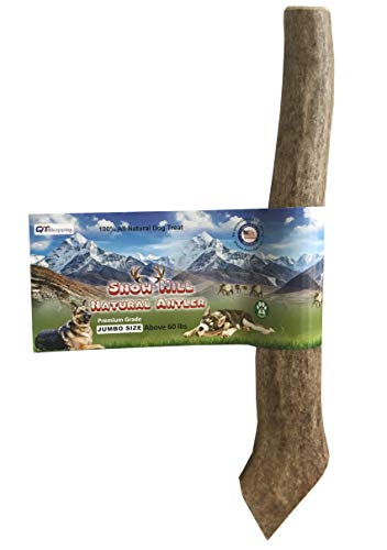 Snow Hill American Antler Dog Chews Rocky Mountain Elk Horn Treats Jumbo Size 7.5