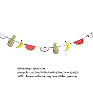 SUNBEAUTY 2m Colorful Paper Fruit Banner Luau Tiki Party Supplies Summer Party Decoration by Pingyang county Mei Chen paper plastic products co., LTD