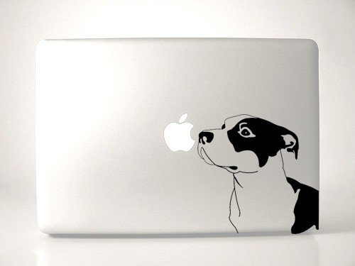 Pitbull Dog Breed Sniffing Apple - Black Decal for 13