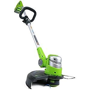 Greenworks 12-Inch 24V Cordless String Trimmer/Edger, 2.0 AH Battery Included 21342