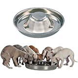 King International Stainless Steel Dog Bowl 1 Puppy Litter Food Feeding Weaning Silver Stainless Dog Bowl Dish Large…