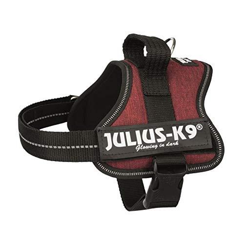 JULIUS K9 Harnais Power Mini?M - 51?67 cm - 28 mm - Rouge bordeaux - Pour chien 5999053674502
