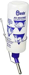 Kordon/Oasis (Novalek) SOA80850 Frosted All Weather Rabbit Water Bottle, 32-Ounce